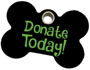 donate today - Fallston Animal Rescue Movement